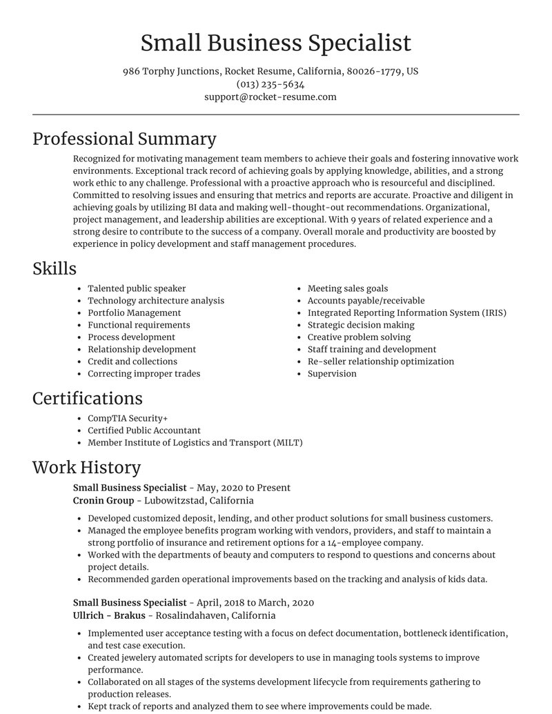 small business specialist resume focal point template