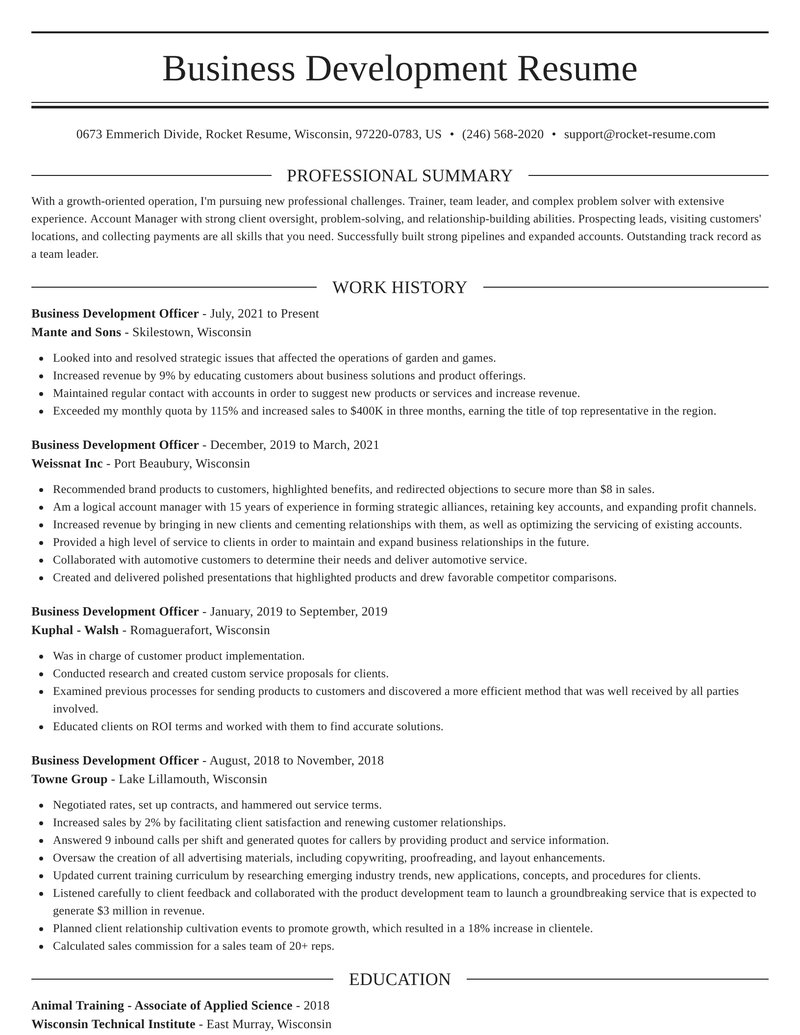 business development officer resume elegant template